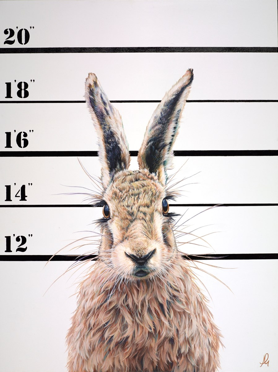 The Unusual Suspects - Harry by hayley goodhead -  sized 30x40 inches. Available from Whitewall Galleries